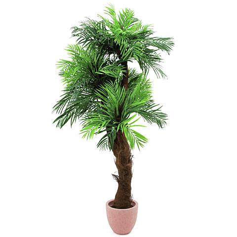 Europalms Areca Palme mit Palmfaserstamm
