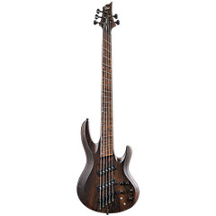 ESP LTD B-1005SE Multi-Scale NS « Basse électrique